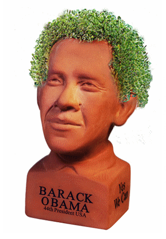 Chia Pet Barrack Obama