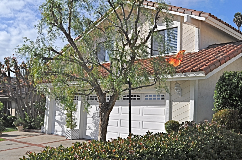 laguna niguel hispanic singles The name laguna niguel is derived from the words laguna  briefly proposed incorporation with laguna niguel as a single city  chart for laguna niguel,.