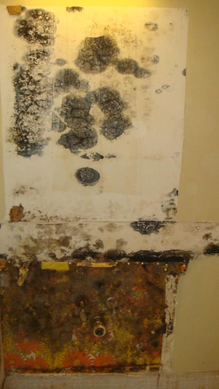 Mold In Bathroom Cabinet hiding moldit's there, you just have to look for it!