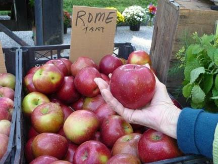 A Rome apple for the artist