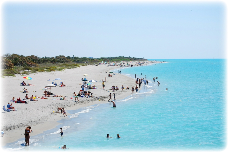 Venice Beach Sarasota The Best Beaches In World