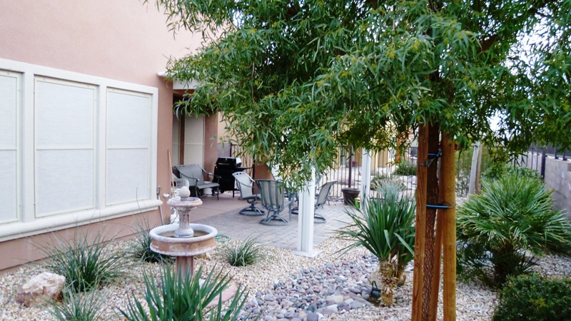Sun City Mesquite Back Yard and patio