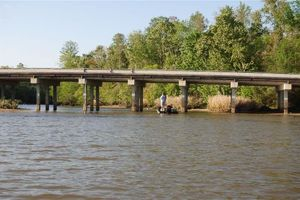 Land For Sale In Livingston Parish Louisiana