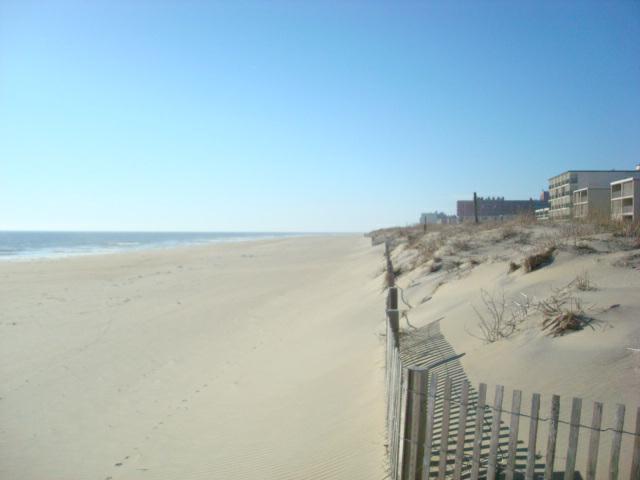 100+ Beach Hill Ocean City Md – yasminroohi