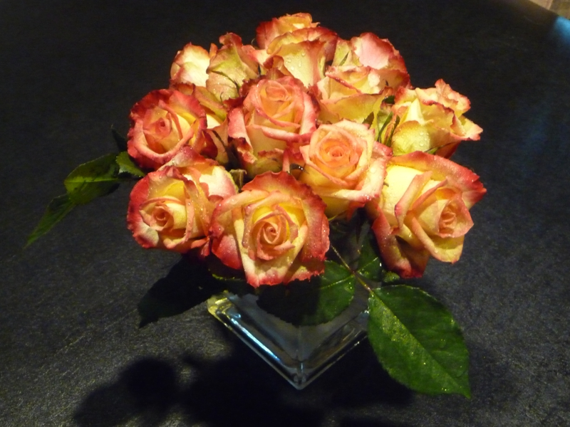 gift of roses   HomeRome 410-530-2400