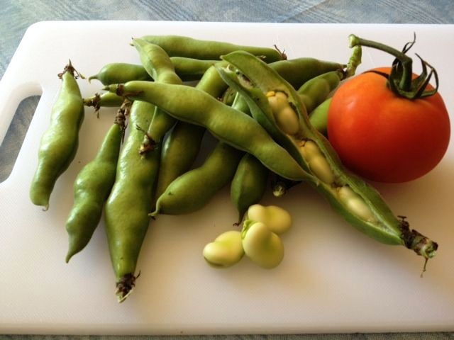 There 39 s nothing like fresh for How to cook fresh lima beans from garden