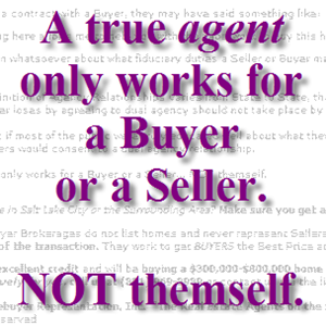 A true agent only works for a buyer or a seller. Not themself.