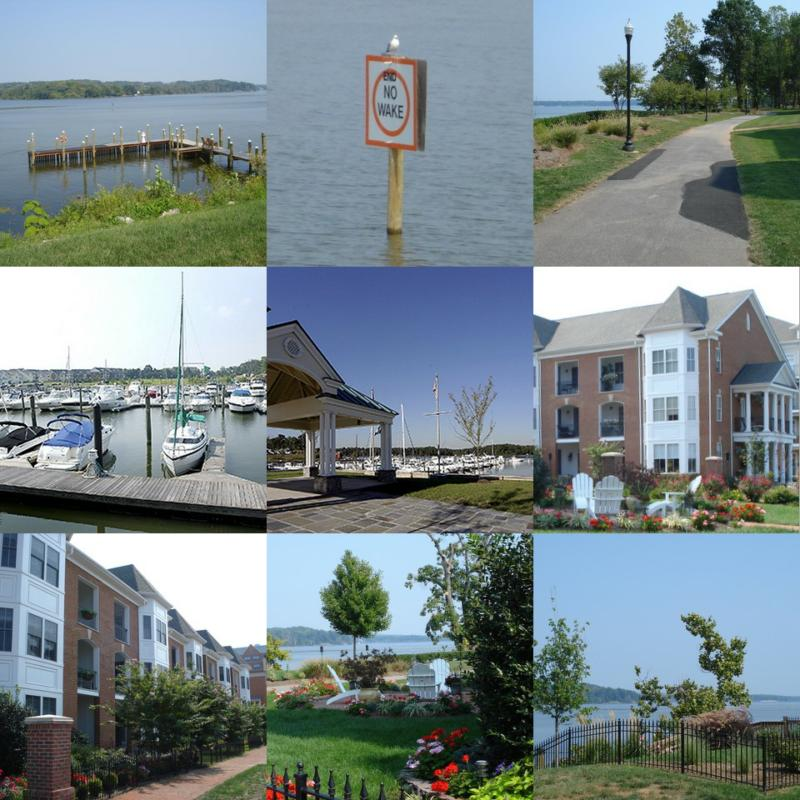 Belmont Bay Collage
