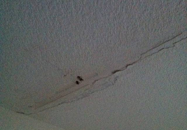The roof is leaking over my apartment Leak in ceiling when it rains