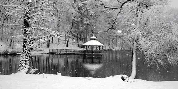 Twin Lakes Estates in Winter
