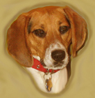Daisy Portrait
