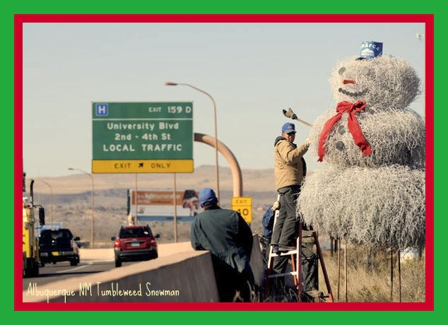 Albuquerque Homes Realty Tumble Weed Snow Man