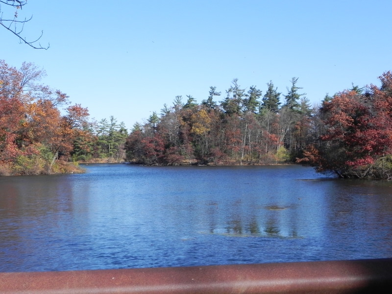 Duck Lake In Orion Township Michigan