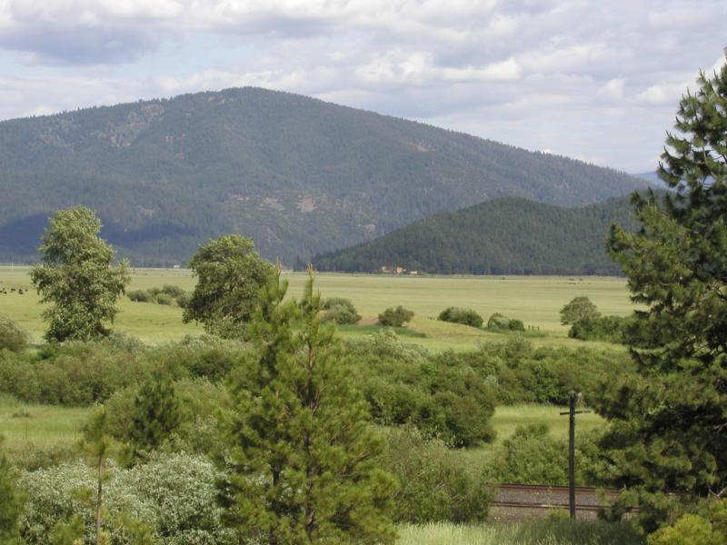 Redding Properties and Land For Sale ~ California Ranch and Land ~ Waterfront Property!