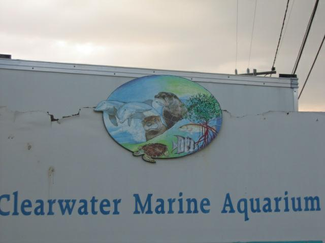 Island Estates Home To Clearwater Marine Aquarium In