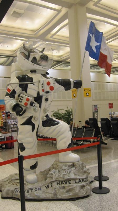 cow astronaut - photo #19