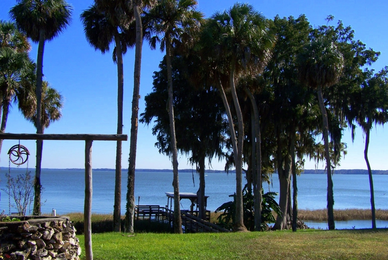 luxury waterfront lakefront homes for sale in mount dora