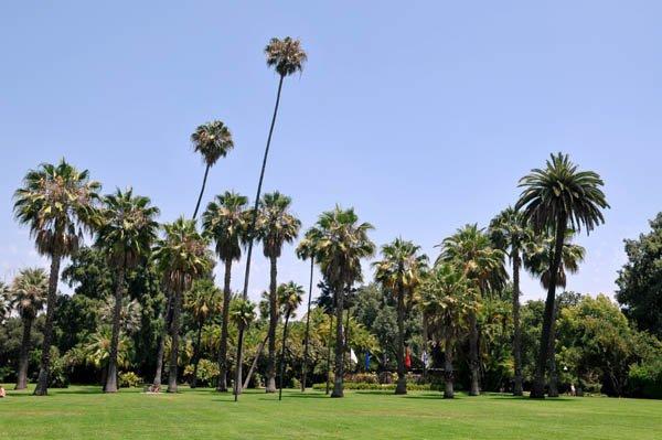beautiful park san marino - photo #39