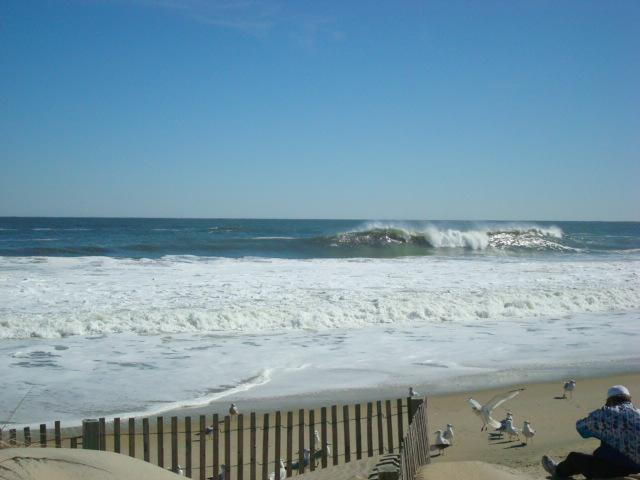 Ocean City Maryland Daily Surf Report, Weather, & New Listings