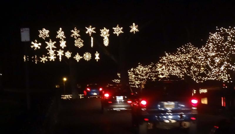 Christmas Lights In Hubbard Park, Meriden, Connecticut