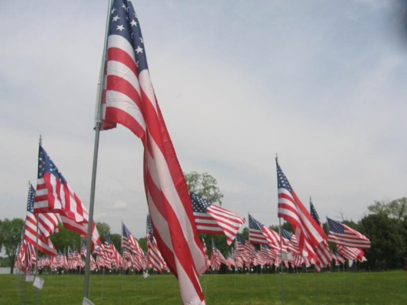 memorial flags II