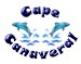 Cape Dolphins