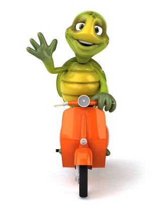 I-Clipart Turtle on a scooter waving