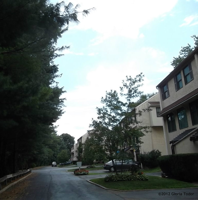 Avondale Station Apartments: Avondale Springs At Wallingford, Delaware County PA Townhouses