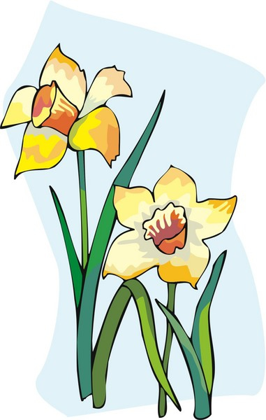 clipart of daffodils