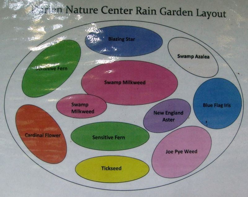 Darien Nature Center Rain Garden Layout