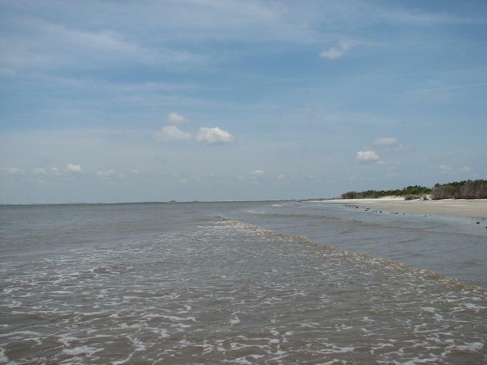 Best Beaches Near Brunswick Ga
