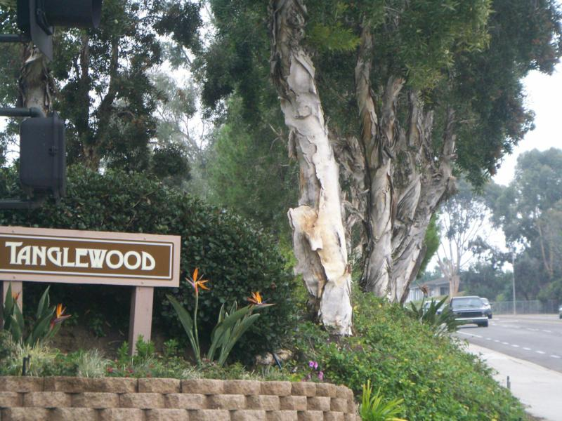 Carlsbad Real Estate - Tanglewood Condos in East Carlsbad - Jeff Dowler