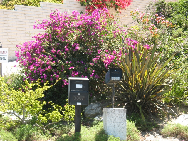 Mailboxes in Miraleste Hills in RPV