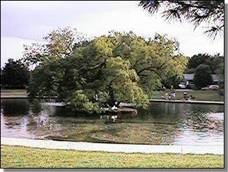 Braden Park within historic White City in midtown Tulsa