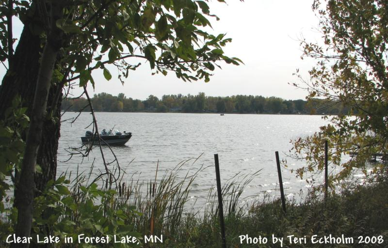 Clear Lake in Forest Lake MN by Teri Eckholm Realtor
