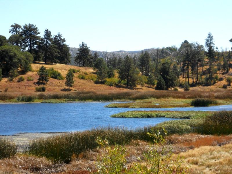 Camp Cuyamaca Outdoor School In Descanso California