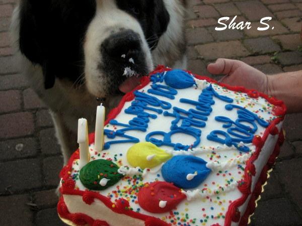 Roby's Birthday