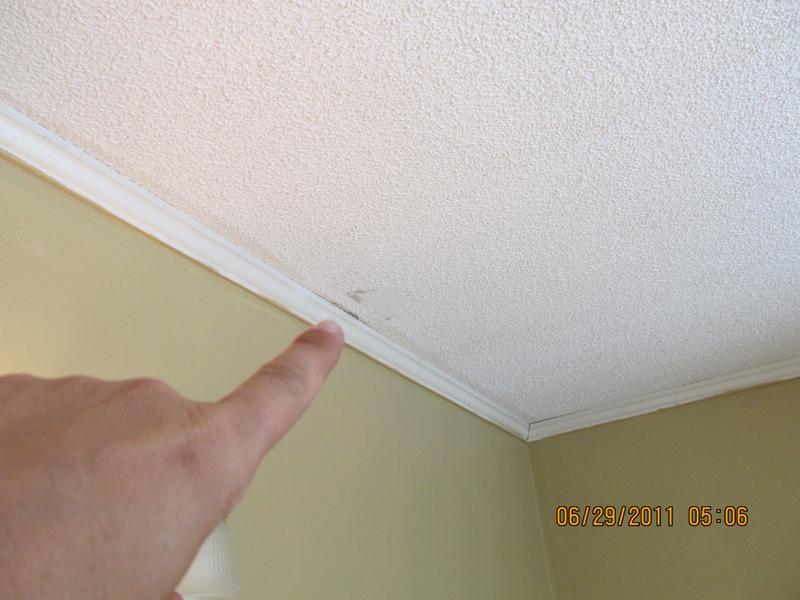 Termites In Bathroom Vent Pest Control Termites At The