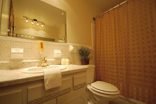 Side Note Here I Did Not Choose The Track Lighting For This Bathroom Had Selected Something Completely Diffe However When Homeowner Realtor
