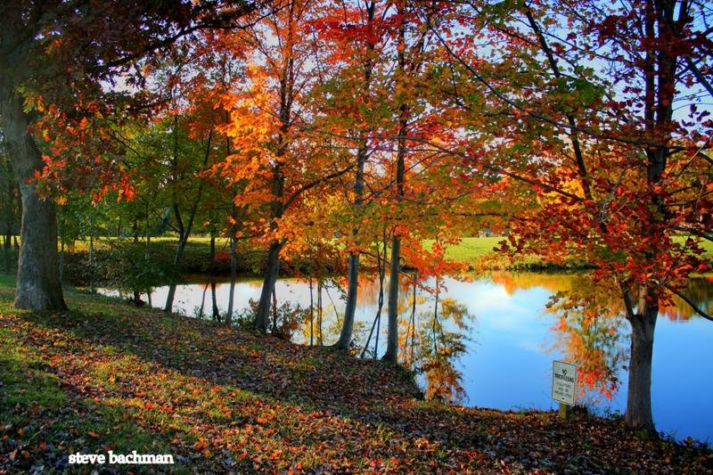 Virginia Landscape Photographer, Digital Artist and Realtor Steve Bachman