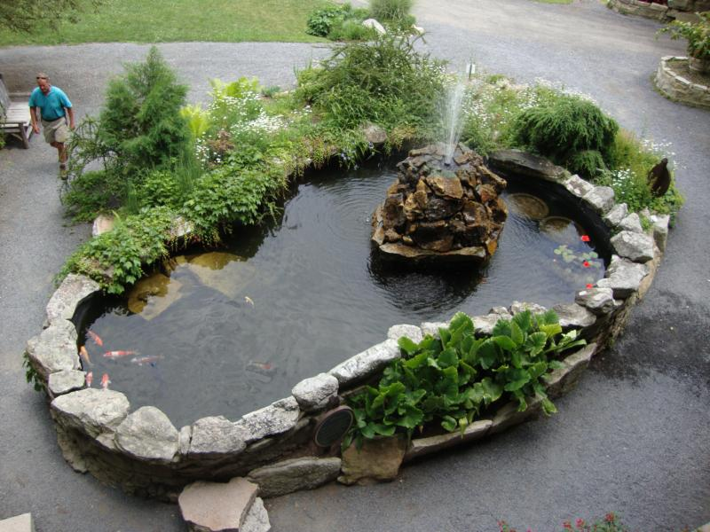 Feng Shui Pond With Koi Fish By Consultant Laura Cerrano Of Long Island