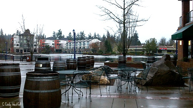 Outside area of Hayden's Lakefront Grill Tualatin Oregon