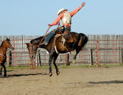 Livermore Rodeo 2010