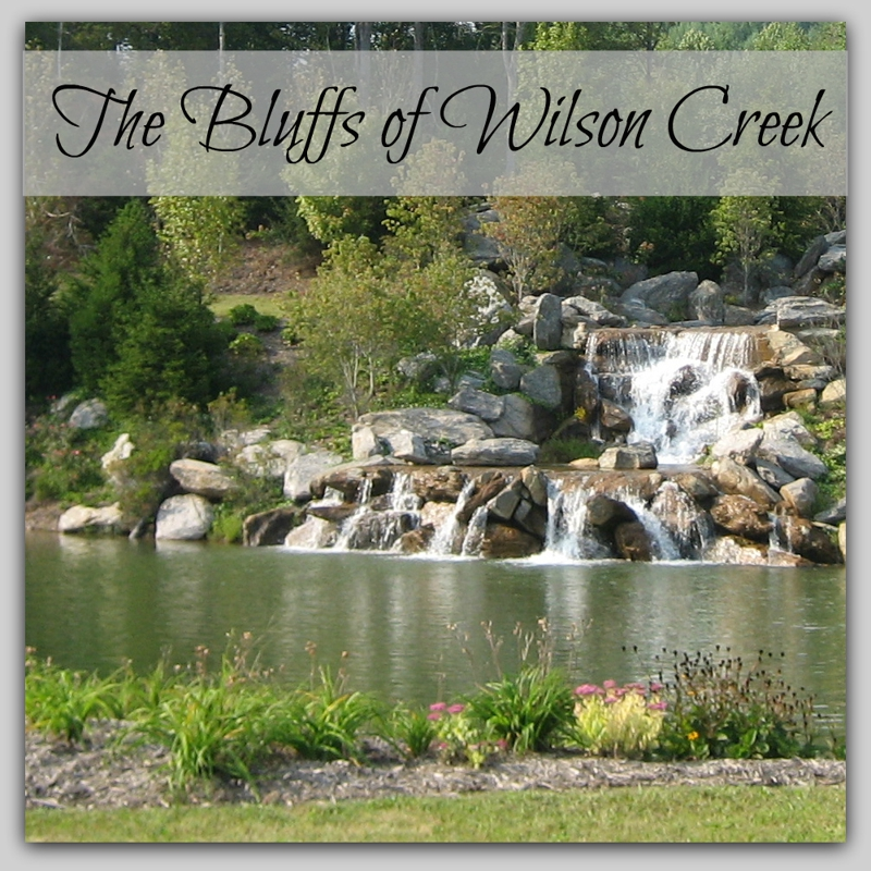 The Bluffs Of Wilson Creek Homes For Sale