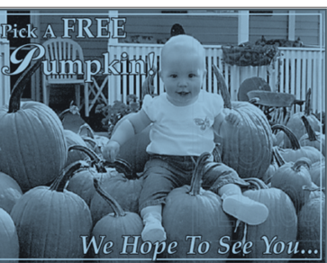 Coldwell Banker Fall Festival