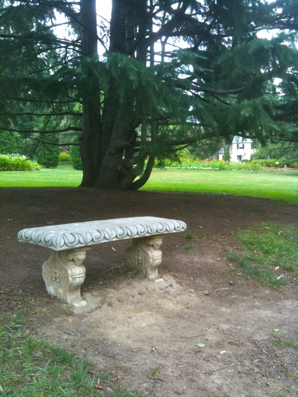 bench in Sherwood Garden