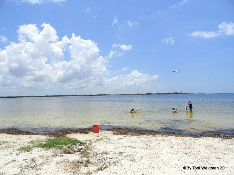Green Key Beach And Robert K Rees Memorial Park In New Port Richey Florida