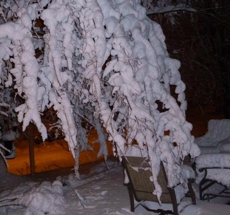 Heavy Baltimore Snow HomeRome 410-530-2400