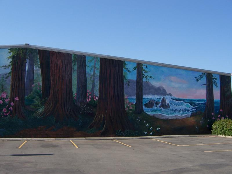 Cescent city redwood mural society project for City mural projects