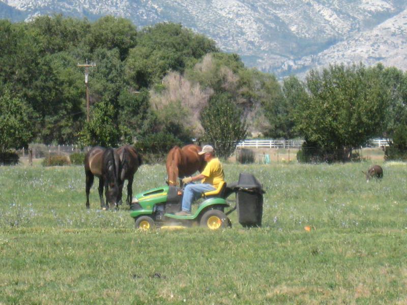 Carson Valley Nevada - Jim Valentine on his John Deere - By Lisa Wetzel